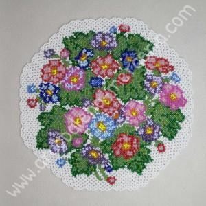 543 Primule fiorite