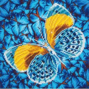 Farfalla dorata