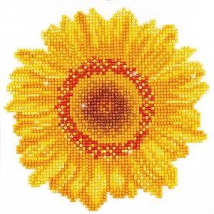 Happy day sunflower